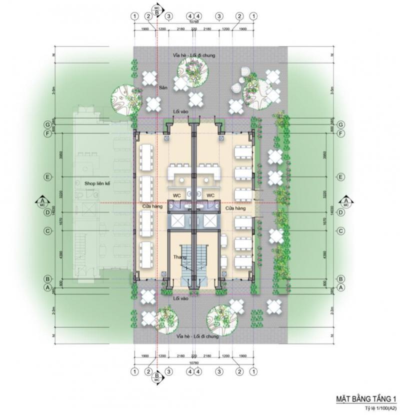 Mặt bằng nhà phố 3 mặt tiền Làng Hà Lan Ecopark - Tầng 1
