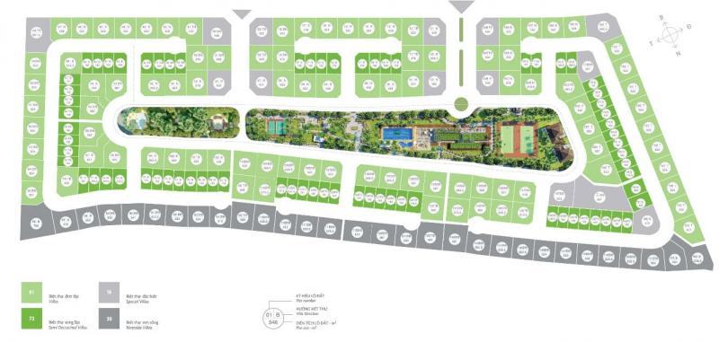 Mặt bằng biệt thự đơn lập Vườn Tùng Ecopark